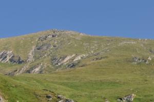2012-06-7 GitaCrabun 01