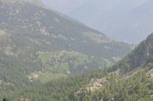 2012-06-7 GitaCrabun 24